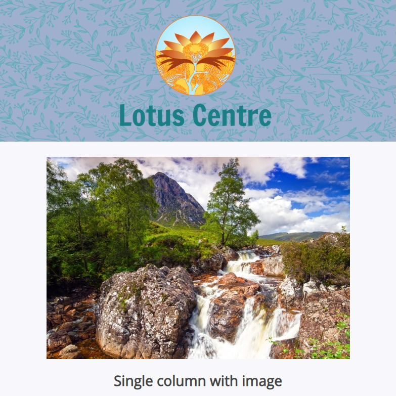 Lotus Centre EDM